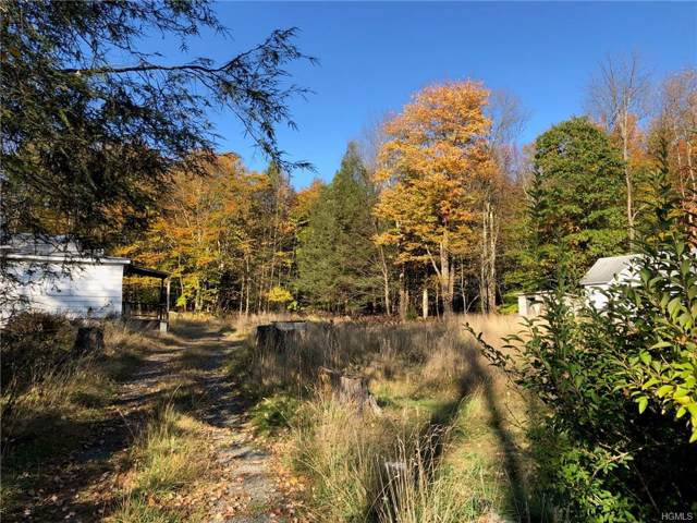19 and 21 Southwoods Drive, Monticello, NY 12701 (MLS #5103137) :: William Raveis Legends Realty Group