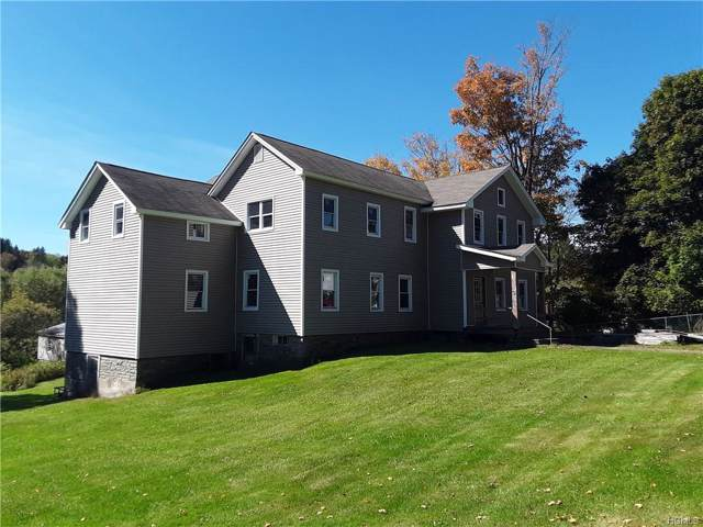 58 Pearl Street, Livingston Manor, NY 12758 (MLS #5103647) :: The Anthony G Team