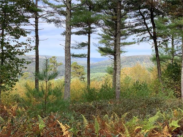 Eagle View, Narrowsburg, NY 12764 (MLS #5104366) :: The McGovern Caplicki Team