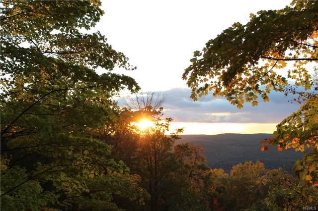 Mt Meenagha Road, Ellenville, NY 12428 (MLS #5104548) :: William Raveis Legends Realty Group
