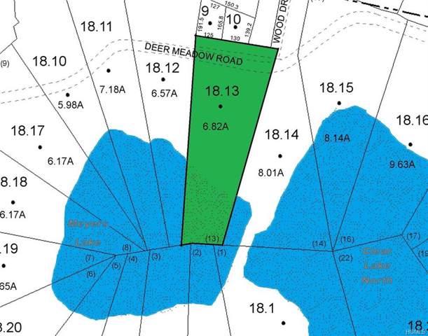 168 Deer Meadow Road, Bethel, NY 12720 (MLS #5104602) :: William Raveis Legends Realty Group
