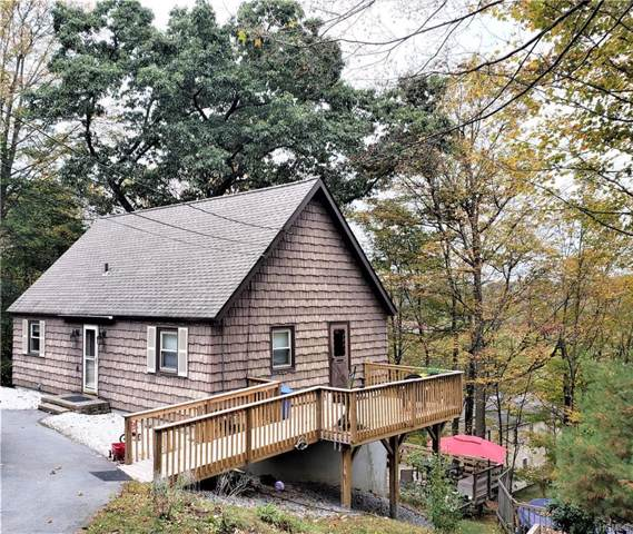 10 Hillside Trail, Monroe, NY 10950 (MLS #5104984) :: Marciano Team at Keller Williams NY Realty