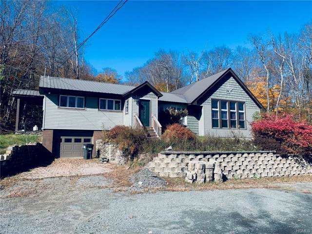 524 Shandelee Road, Livingston Manor, NY 12758 (MLS #5105616) :: William Raveis Legends Realty Group