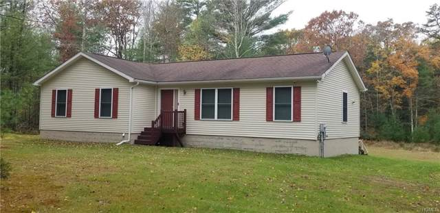 2189 State Route 42, Forestburgh, NY 12777 (MLS #5106152) :: Mark Boyland Real Estate Team
