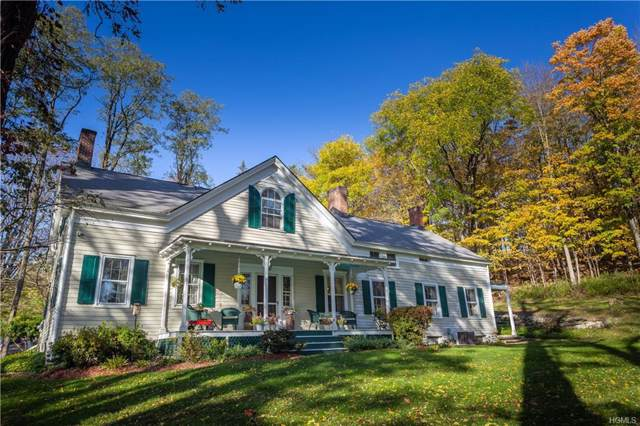 34 Rymph Road, Lagrangeville, NY 12540 (MLS #5106753) :: William Raveis Legends Realty Group
