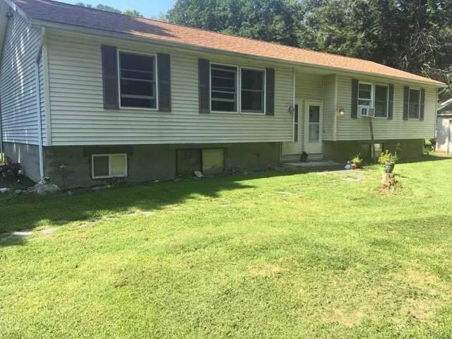 55 Glen Avenue, Dover Plains, NY 12522 (MLS #5106755) :: Mark Boyland Real Estate Team