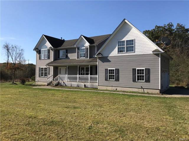 49 Tuthill Road, Blooming Grove, NY 10914 (MLS #5106779) :: William Raveis Baer & McIntosh