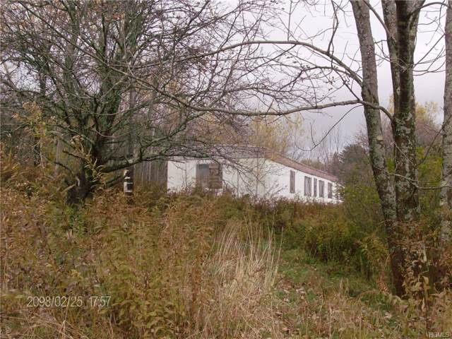 215 County Road 92, Roscoe, NY 12776 (MLS #5106949) :: The Anthony G Team
