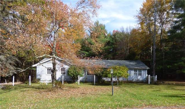 4 Spruce Lane, Monticello, NY 12701 (MLS #5107002) :: Mark Boyland Real Estate Team