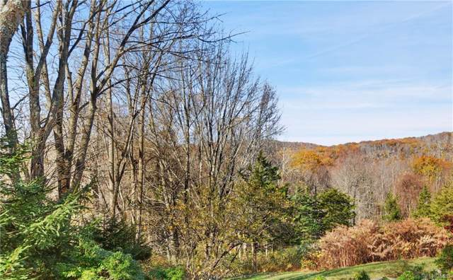 Old Stone Hill Road, Pound Ridge, NY 10576 (MLS #5107068) :: The Anthony G Team