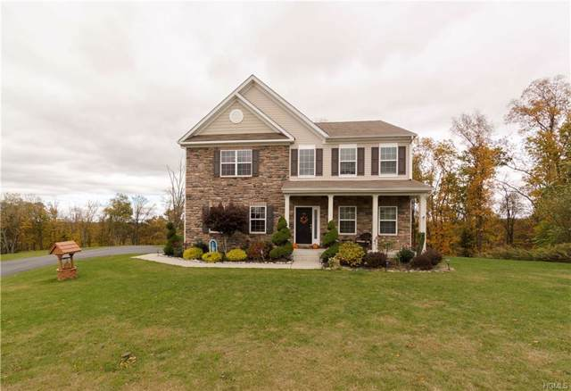 58 Hill View Drive, Florida, NY 10921 (MLS #5107293) :: William Raveis Baer & McIntosh