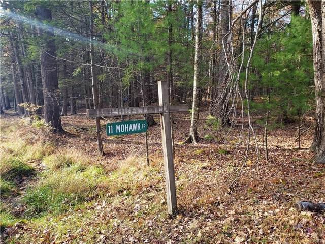 Mohawk Trail, Glen Spey, NY 12737 (MLS #5108444) :: The Anthony G Team