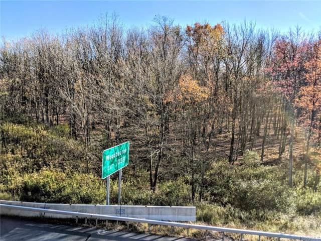99 Liberty Street, Monticello, NY 12701 (MLS #5109107) :: William Raveis Baer & McIntosh