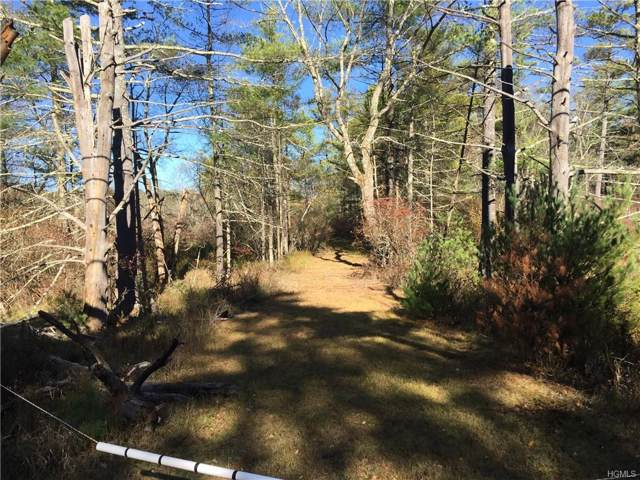 Highland Lake Road, Highland, NY 12528 (MLS #5110453) :: The Anthony G Team