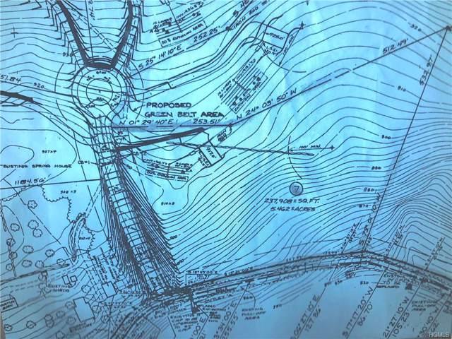 Gumaer Falls Road, Wurtsboro, NY 12790 (MLS #5110458) :: William Raveis Legends Realty Group