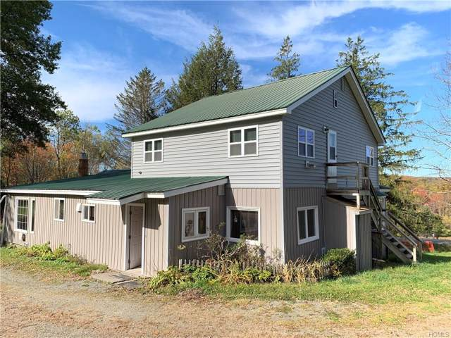 640 County Road 93, Roscoe, NY 12776 (MLS #5110462) :: The Anthony G Team