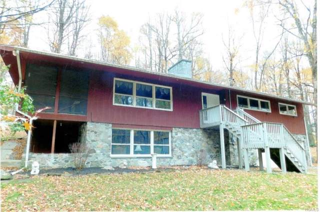 58 Gretna Woods Road, Pleasant Valley, NY 12569 (MLS #5111106) :: William Raveis Legends Realty Group