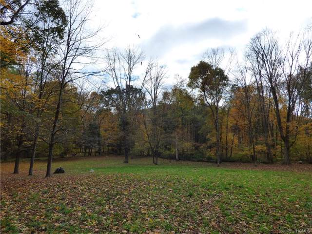 Dog Tail Corners Road, Dover, NY 12594 (MLS #H5111267) :: William Raveis Legends Realty Group