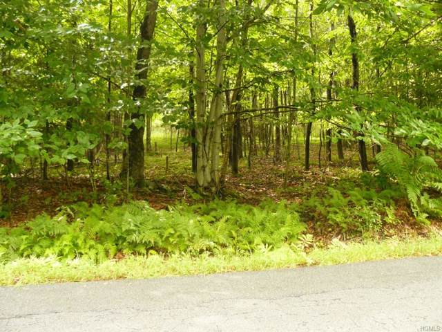 Hurd & Parks Road Tr 47, Bethel, NY 12720 (MLS #5112531) :: Mark Boyland Real Estate Team