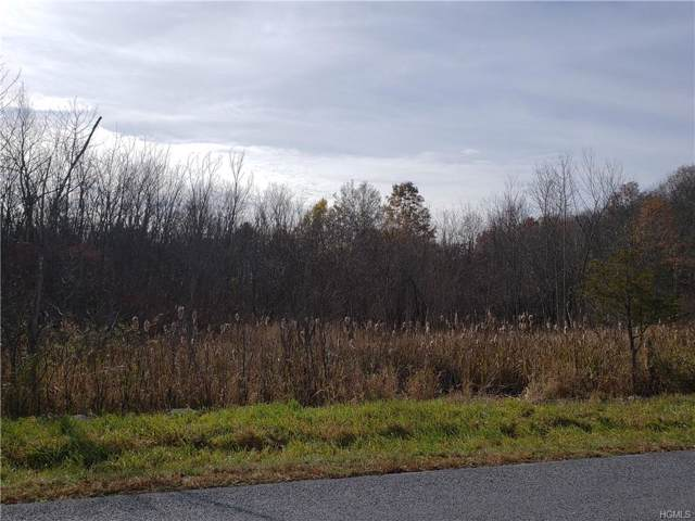 Burlingham Road & Long Lane, Pine Bush, NY 12566 (MLS #5112853) :: William Raveis Legends Realty Group