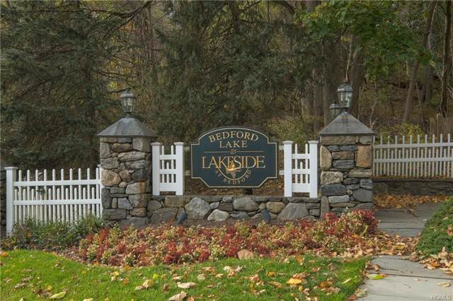 100 Haines Road #1013, Bedford Hills, NY 10507 (MLS #5113897) :: William Raveis Legends Realty Group