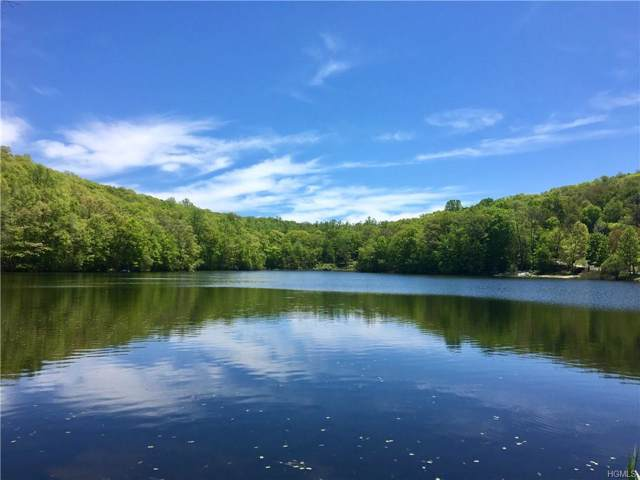 Beach Court, Carmel, NY 10512 (MLS #5114936) :: William Raveis Legends Realty Group