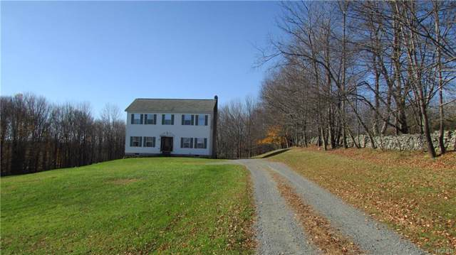 49 Yaun Road, Livingston Manor, NY 12758 (MLS #5114943) :: William Raveis Legends Realty Group