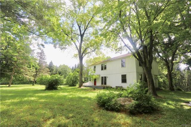 371 Route 32 South, New Paltz, NY 12561 (MLS #5115625) :: The Anthony G Team