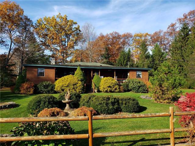 590 County Road 13, Prattsville, NY 12468 (MLS #5115865) :: William Raveis Legends Realty Group
