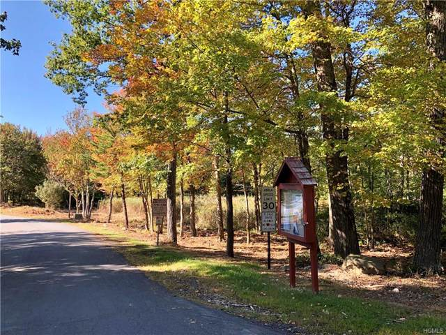Picadilly Circle, Rock Hill, NY 12775 (MLS #5116385) :: Mark Boyland Real Estate Team