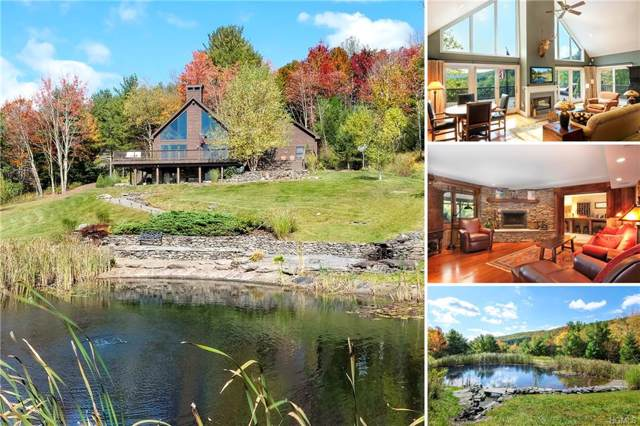 310 Scotch Pine Lane, Andes, NY 13731 (MLS #5117085) :: William Raveis Legends Realty Group