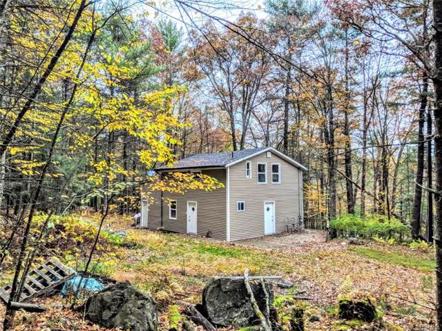 979 State Route 42, Sparrowbush, NY 12780 (MLS #5117652) :: The Anthony G Team