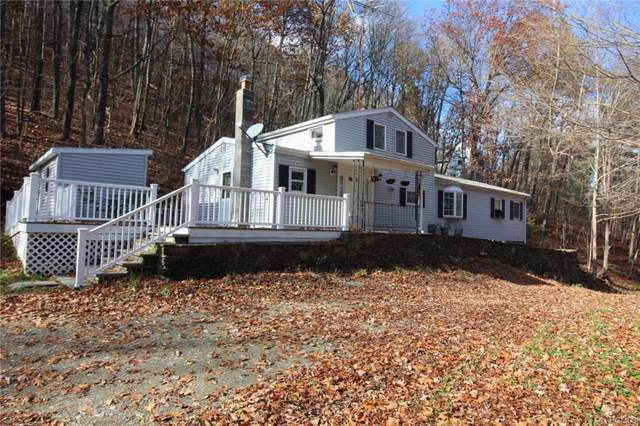 67 Mountain Road, Red Hook, NY 12571 (MLS #5117827) :: William Raveis Legends Realty Group