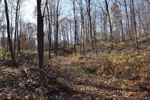 South Road, Stanfordville, NY 12581 (MLS #5118256) :: William Raveis Baer & McIntosh