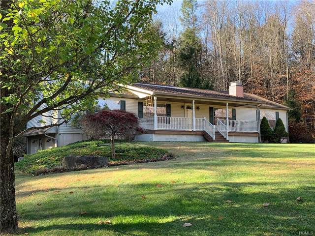 44 Drake Road, Neversink, NY 12765 (MLS #5118424) :: William Raveis Legends Realty Group