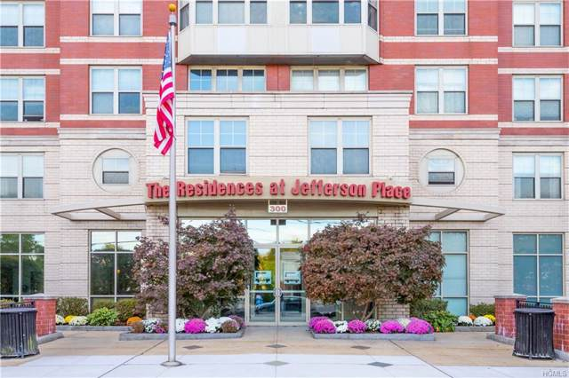 300 Mamaroneck Avenue #619, White Plains, NY 10605 (MLS #5118648) :: The McGovern Caplicki Team
