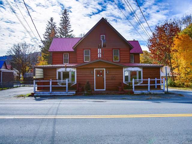 1987 Old Route 17, Roscoe, NY 12776 (MLS #5118679) :: The Anthony G Team