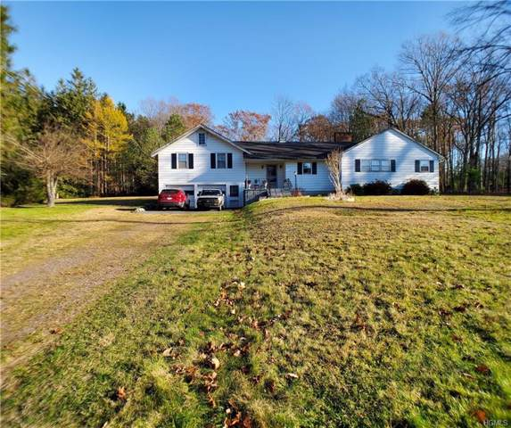2496 E State Route 42, Forestburgh, NY 12777 (MLS #H5118709) :: Cronin & Company Real Estate