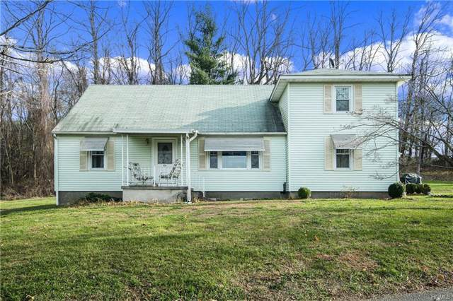 51 Strawberry Hill Road, Stormville, NY 12582 (MLS #5118717) :: William Raveis Legends Realty Group
