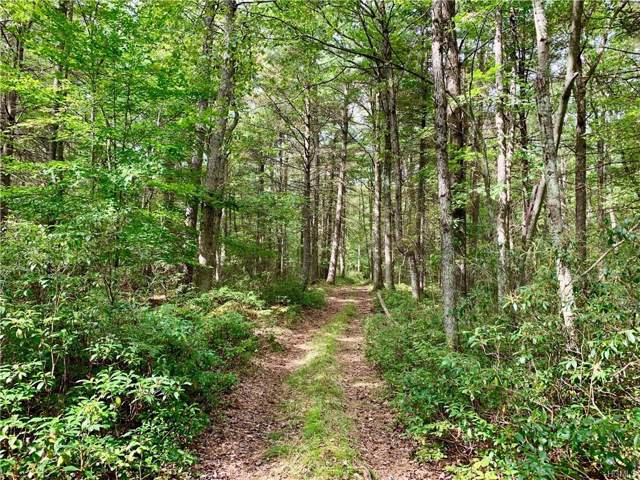 Lot 11 Brook Drive, Narrowsburg, NY 12764 (MLS #5119473) :: The McGovern Caplicki Team