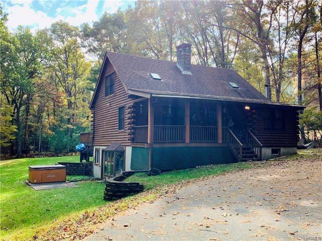 81 Airport Road, Eldred, NY 12732 (MLS #5119496) :: The Anthony G Team