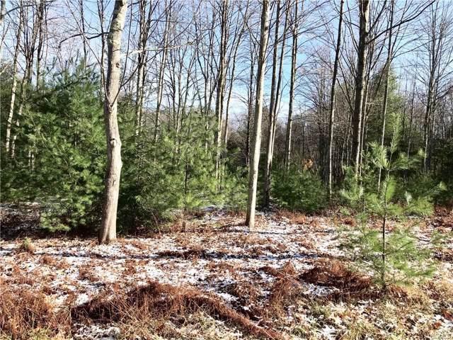 County Route 56, Wurtsboro, NY 12790 (MLS #5119617) :: Mark Boyland Real Estate Team