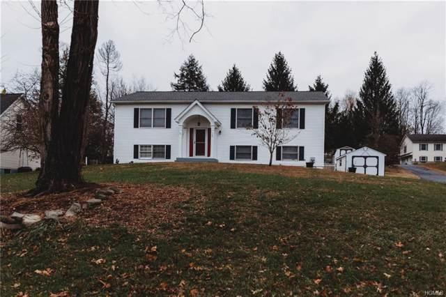 110 River Road, Wallkill, NY 12589 (MLS #5119767) :: William Raveis Baer & McIntosh