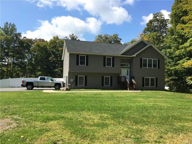 2255 State Route 300, Wallkill, NY 12589 (MLS #5119931) :: The Anthony G Team