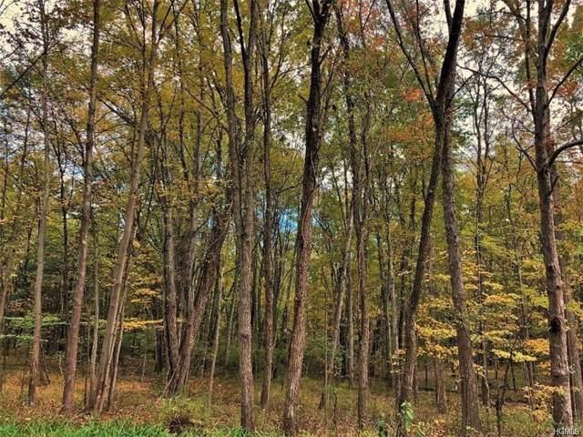 New Prospect Road, Pine Bush, NY 12566 (MLS #5120263) :: The McGovern Caplicki Team