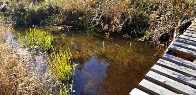 Lot #22 Swamp Pond Road, Tusten, NY 12764 (MLS #H5120277) :: Kevin Kalyan Realty, Inc.