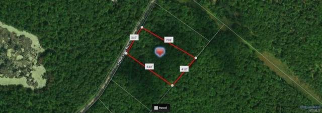 Lot 11 County Rd 26, Narrowsburg, NY 12764 (MLS #5120329) :: William Raveis Baer & McIntosh