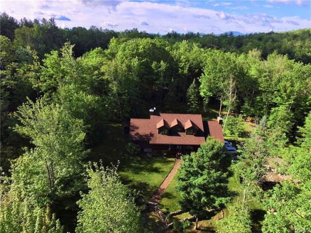 293 River Road, Other, NY 12862 (MLS #5120464) :: Mark Boyland Real Estate Team