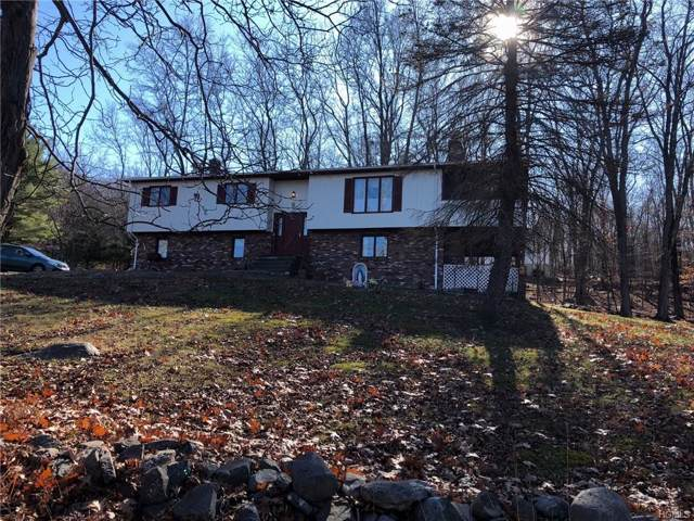 2 Fernglade Court, Monroe, NY 10918 (MLS #5120582) :: The McGovern Caplicki Team