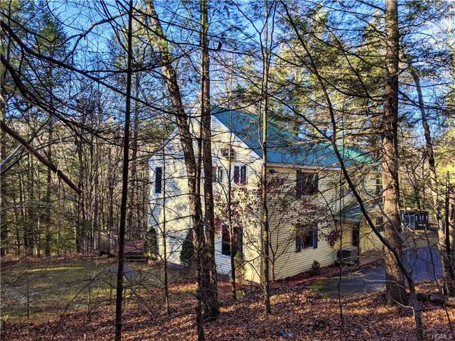 149 Starlight Drive, Monticello, NY 12701 (MLS #5120642) :: The Anthony G Team